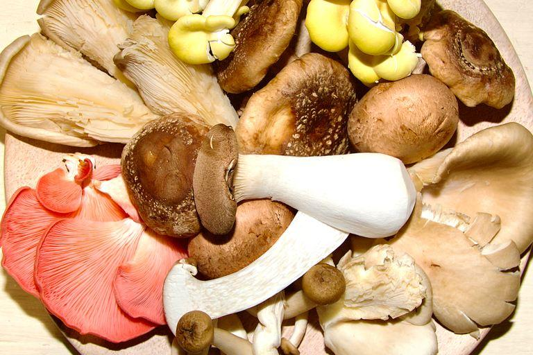 A delightful selection of mushroom varieties laid out on a simple wooden plate.